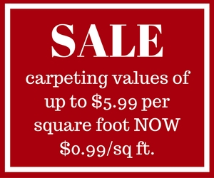 Carpet Savings